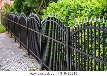 Iron Fence.  Black Metal Fence Near Trees