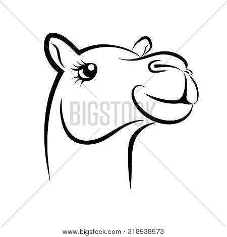 Camel Cartoon In Black And White Images, Illustrations