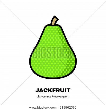 Jackfruit Icon, Outline With Color Fill Style Vector Illustration