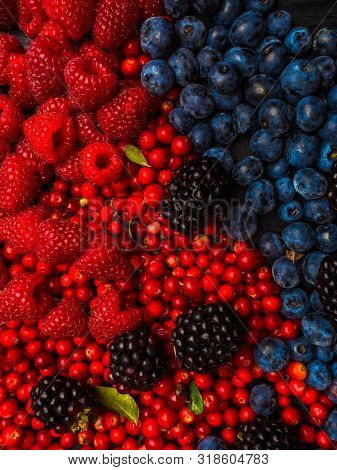 Super Antioxidants. Superfood. Mix Of Fresh Berries, Rich With Resveratrol, Vitamins, Raw Food Ingre