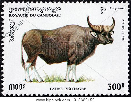 Cambodia - Circa 1995: A Stamp Printed In Cambodia Shows Bos Gaurus, Is The Largest Extant Bovine Na