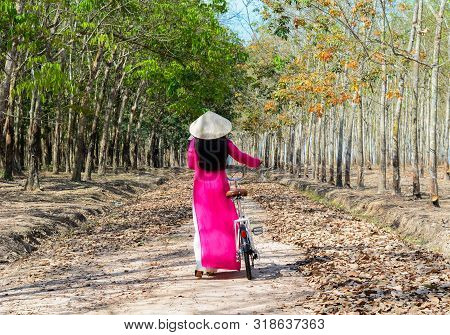 An Asian in traditional dress (Ao Dai) with a conical hat, walking on rural road in Southern Vietnam. poster
