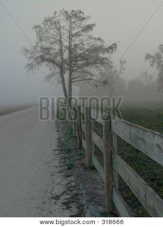 Fog Fence