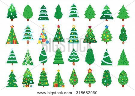 Christmas Trees. Decorated New Year Tree, Green Spruce And Gift Box Under Xmas Tree. Winter Holiday
