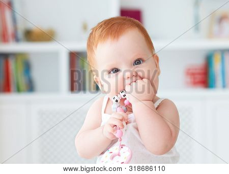 Infant Baby Girl Biting Silicone Nibbler Toy