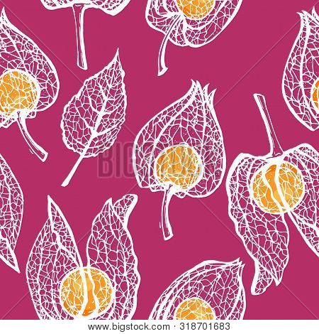 Vector Seamless Pattern Of Physalis. Cape Gooseberry (winter Cherry). Vector Seamless Pattern.