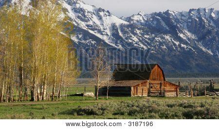 Jackson Hole Famous Barn