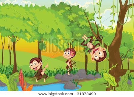 illustration of 3 cheeky monkeys