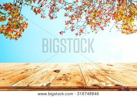 Top Of Wood Table With Beautiful Autumn Maple Tree On Sky Background - Empty Ready For Your Product