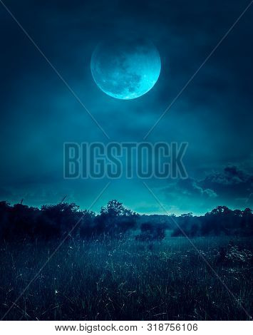 Landscape Of Dark Night Sky With Clouds. Beautiful Bright Full Moon Above Wilderness Area In Forest,