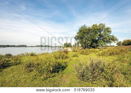 Shore And Floodplains Of The Dutch River Waal Near The Village Of Vuren. The Photo Was Taken On A Su
