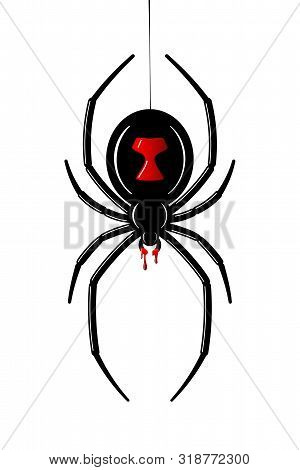 Spider Black Widow. Red Black Bug Spider 3d, Isolated White Background. Scary Halloween Redblack Ico