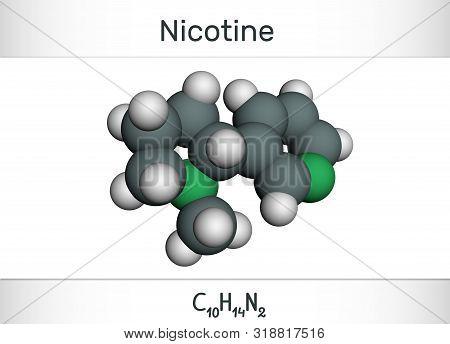 Nicotine Molecule, Is Alkaloid , Found In The Nightshade Family Of Plants. Molecule Model. Illustrat
