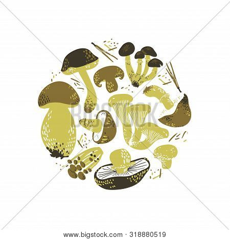 Edible Mushrooms Round Illustration. Linocut Old Style. Hand Drawn Vector Illustration.