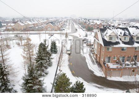 Winter Suburban Landscape