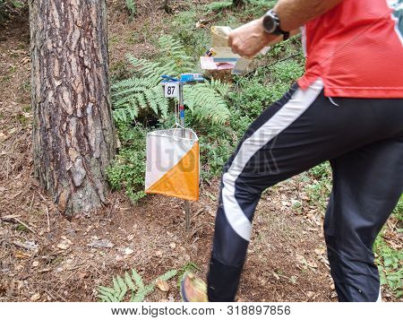 Person Racing To An Orienteering Check Point, Put The Finger Chip Into Digital Check Box.  Outdoor O