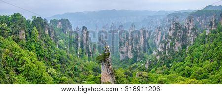 Famous tourist attraction of China - Panorama of Zhangjiajie stone pillars cliff mountains in fog clouds at Wulingyuan, Hunan, China