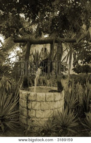 Traditional Well