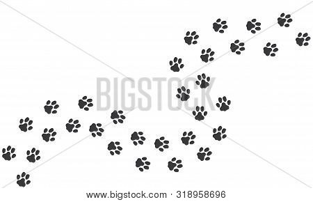 Cat Footprints. Cats Or Dogs Travel Footprints. Black Domestic Animals Paw Prints Isolated On White