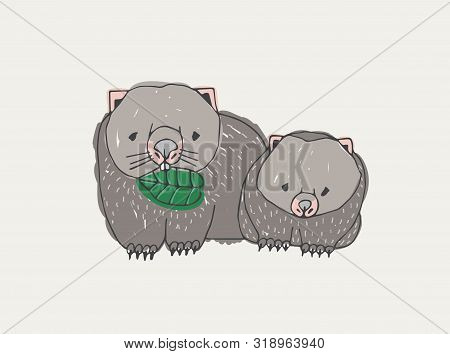Wombat Eating Leaf And Its Baby Isolated On White Background. Funny Wild Endemic Herbivorous Animals
