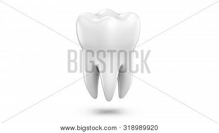 Dental 3d Model Of Premolar Tooth As A Concept Of Dental Examination Teeth, Dental Health And Hygien