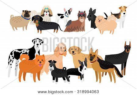 Different Dogs Breeds Image. Vector Cartoon Group Of Dogs, Cute Labrador And Yorkshare Terrier, Frie