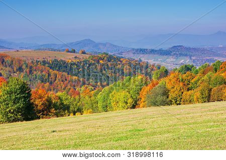 Beautiful Autumn Mountain Landscape. Scenic View Of A Forest In Fall Foliage. Grassy Meadows And Ope