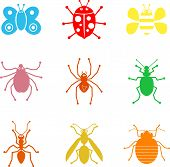 collection of simple isolated insect and bug shape icons poster