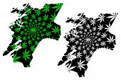 Nord-Trondelag (Administrative divisions of Norway, Kingdom of Norway) map is designed cannabis leaf green and black, Nord-Trondelag fylke map made of marijuana (marihuana,THC) foliage, poster