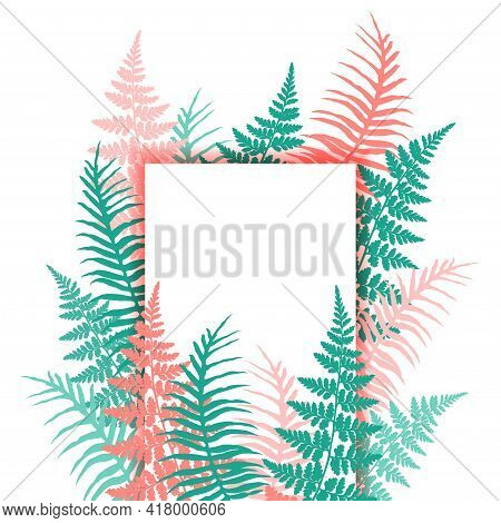 Fern Frond Tropical Leaves Frame Vector Illustration. Bush Plant Leaves Decoration On White Backgrou