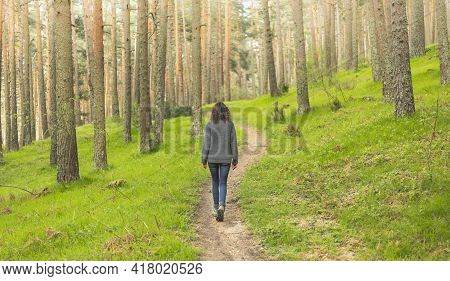 Calm Woman Walking Alone In The Forest In Search Of Adventure