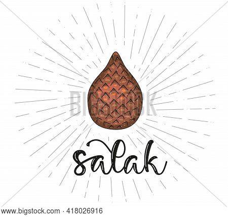 Salak - Fruit Symbol For Farm Market Menu, Healthy Food Design. Vector Stock Illustration With Lette