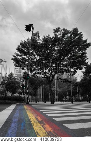 Colorful Zebra Crossing On Nice Avenue In The Summer. Nice Tree In The Middle Of The Avenue