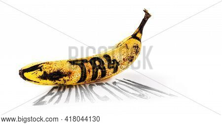 Banana Contaminated By Fusarium Oxysporum, Text In English Written Name Of The Disease: Tr 4 And Ext