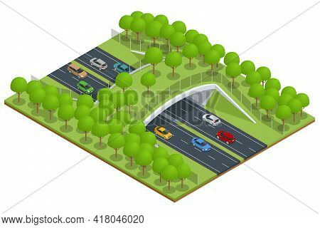 Isometric Expressway With A Bridge For Wildlife. Bridge Over A Highway In Forest