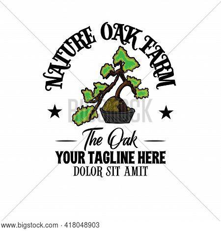 Oak Nature Design Vector. Illustration Oak Tree Logo Vector.