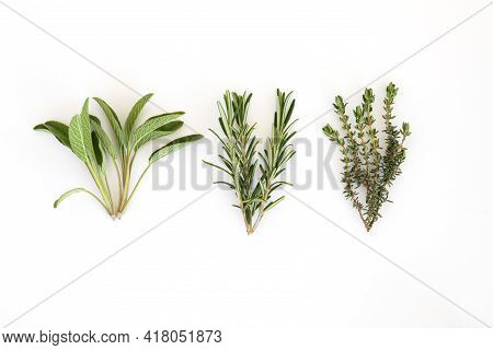 Salvia Officinalis, Rosemary , Thyme. Bunch Of Garden Herbs Isolated On White Background. Copy Space