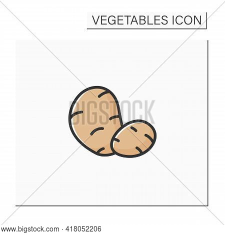Potato Color Icon. Spuds. Edible Plant. Vegetarian, Healthy Nutrition. Health Benefits. Agriculture