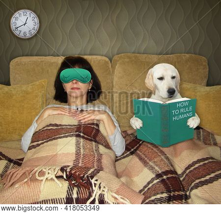 In A Bed A Smart Dog Labrador Reads A Book Called How To Rule Humans. His Owner Is Sleeping Next To