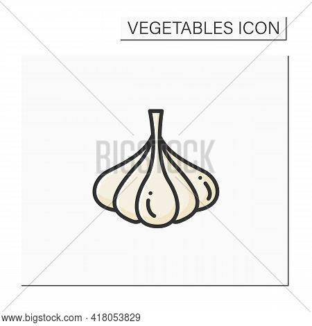 Garlic Color Icon. Special Species For Dishes. Improve Food Taste. Dietary Food. Vegetarian, Healthy