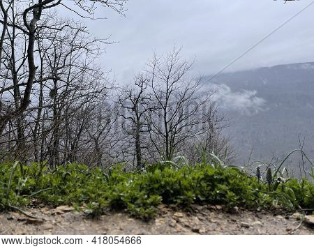 Beautiful Landscape Of Mountainous Terrain In Fog. Nature Background Of Hilly Area In Foggy And Clou