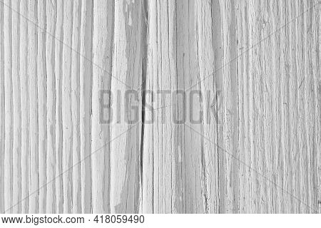 Light Dry Wooden Surface, Cracked With Age. Old Pale Wood. Natural White Background. Hard Sunlight W