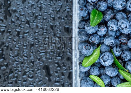 Fresh Blueberries Background With Copy Space For Your Text. Vegan And Vegetarian Concept. Macro Text