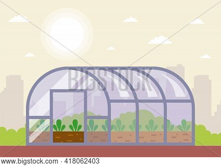 Seedlings Are Planted In The Greenhouse In Spring. Flat Vector Illustration.
