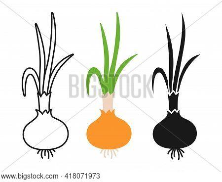 Bulb Onion Beet Cartoon Set, Line Icon, Black Glyph Style. Onion Organic Food. Rural Healthy Vegetab