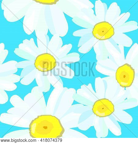 Daisy Chamomile Field Meadow Spring Summer Flowers Seamless Pattern On Light Blue Sky Background. Tr