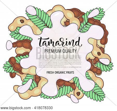 Vector Background With Tamarind, Whole And Pieces. Vector Stock Illustration Isolated On White Backg