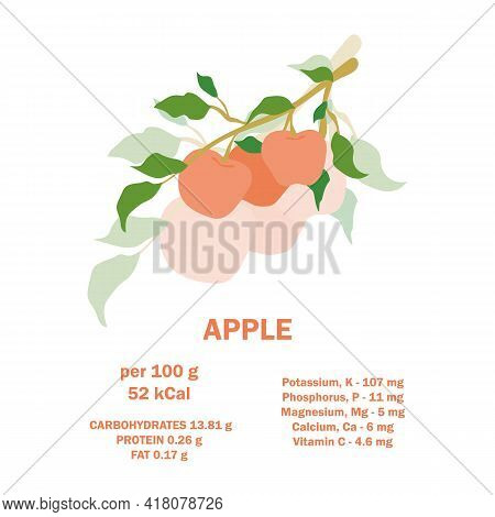 Information About Nutrition Facts Apple Fruit. Infographic Card About Calories Of Apple 100g. Vitami
