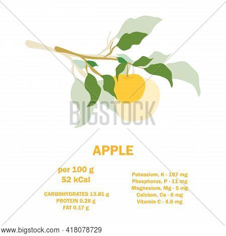Infographic Card About Calories Of Apple 100g. Vitamins, Minerals And Calorie Content. Flat Healthy