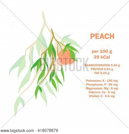 Infographic Card About Calories Of Peach 100g. Vitamins, Minerals And Calorie Content. Flat Healthy